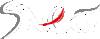 SNEG Tunisie Logo